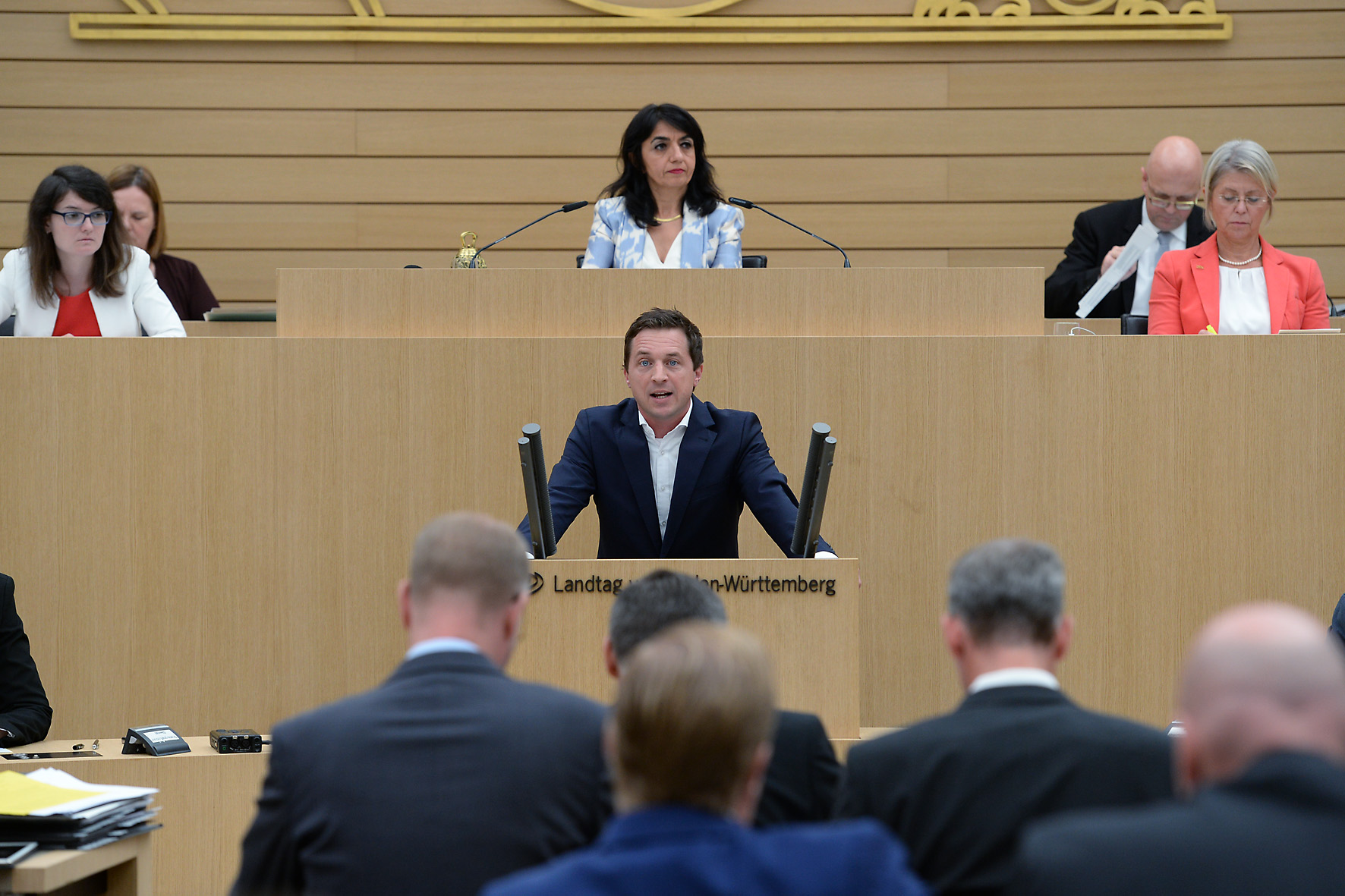 Rede in einer Plenarsitzung